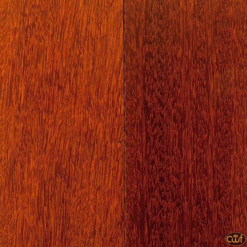 Kempas 3 carolina floor covering for Kempas hardwood flooring
