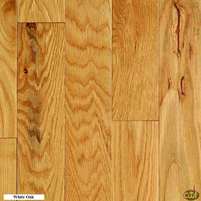 White Oak Natural 3 1 4 Quot Carolina Floor Covering